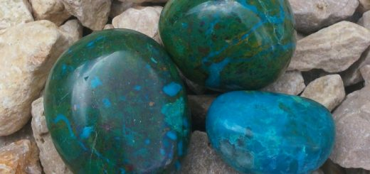 chrysocolle